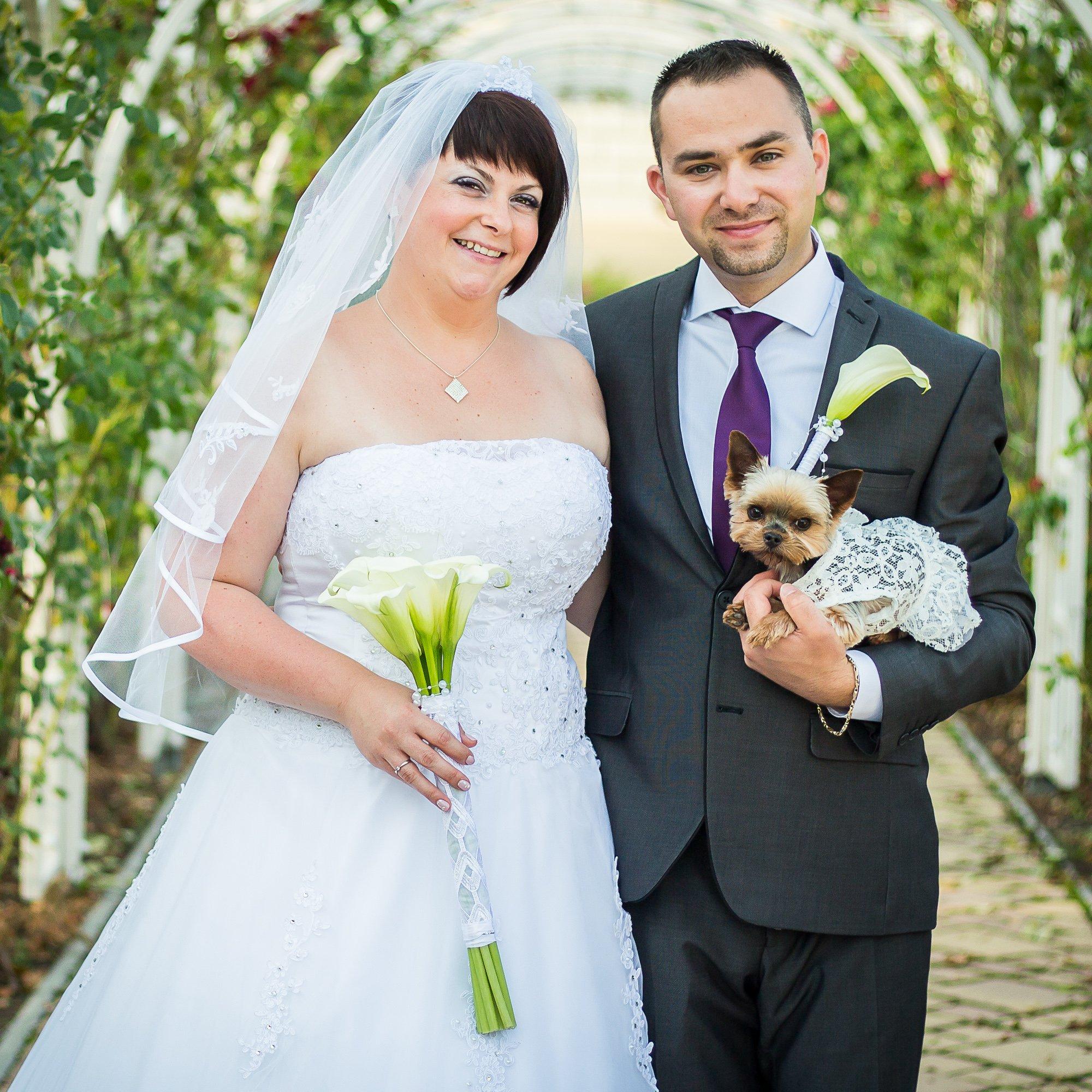 Esküvőfotózás kutyussal